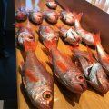 藤沢で海鮮料理のおいしい寿司店